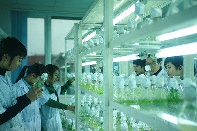 công nghệ môi trường